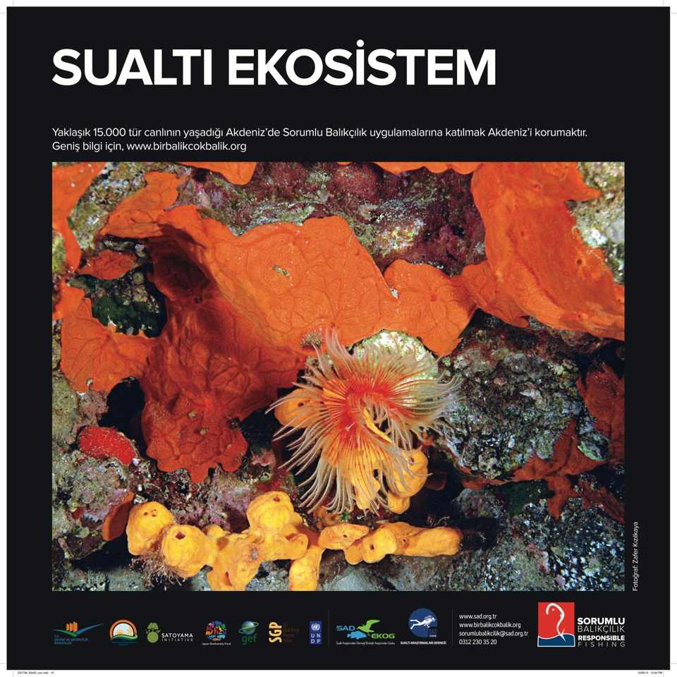 SAD-EKOG_Sorumlu Balikcilik_sualti ekosistem